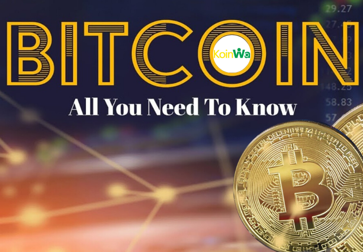 Things You Need To Know About Crptocurrency(Bitcoin) Before Investing
