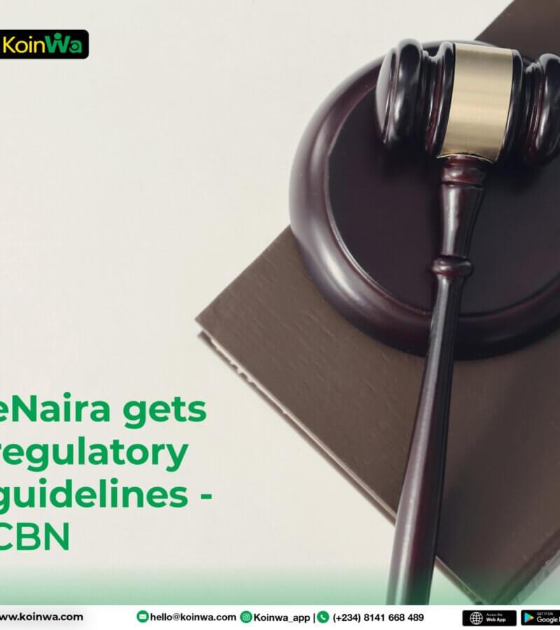 eNaira gets regulatory guidelines – CBN